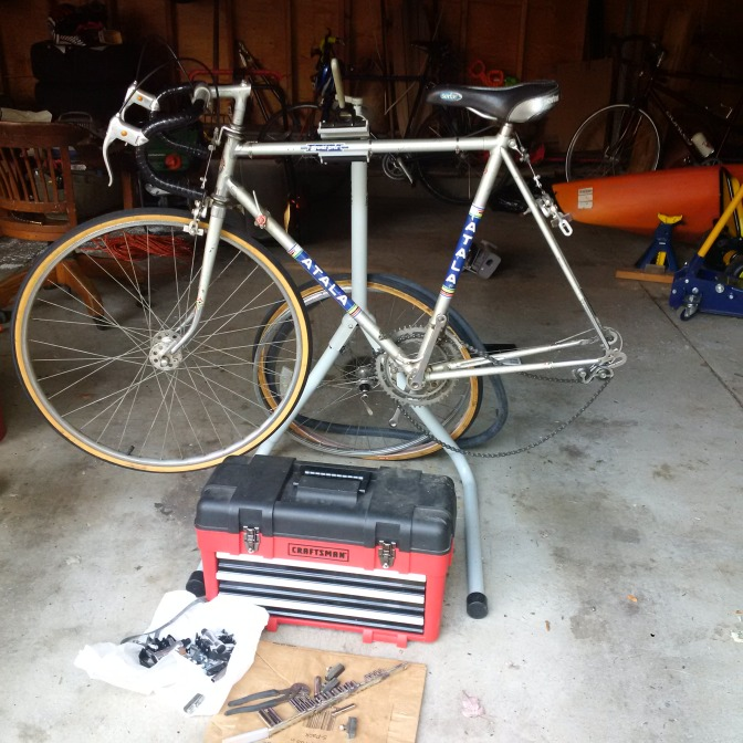 The old Atala has a few chips and scratches but looks good overall -- a steal at $40.