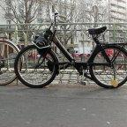 Velosolex Sighting  Recalls a Treasured Test-Ride